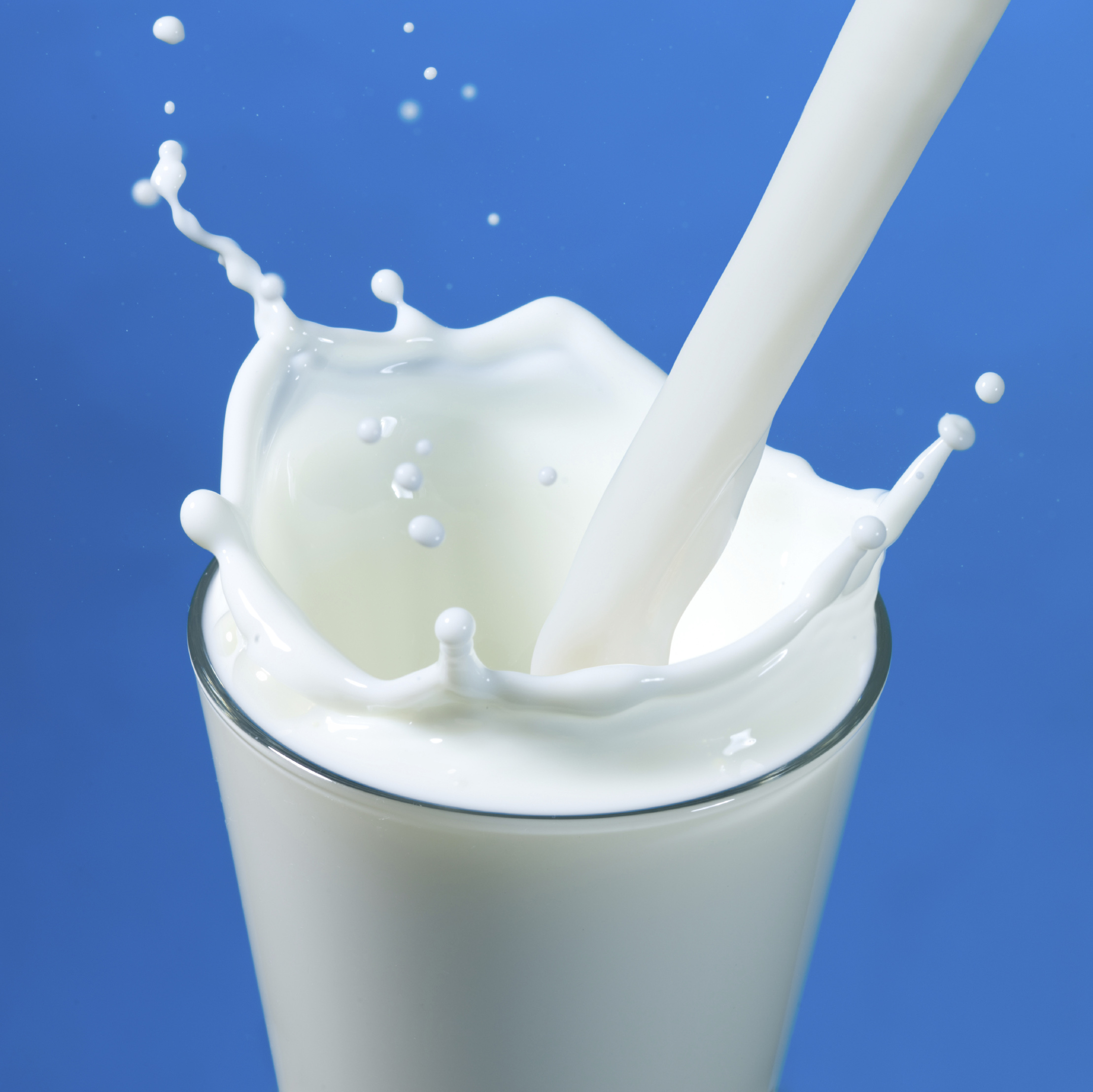 Image result for milk images